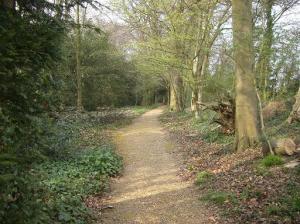 """Darwin's """"Thinking Path"""" near his home, Down House"""