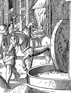 The Manufacture of Oil, J Amman, 16th century